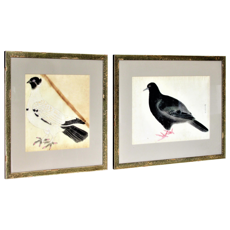 Antique Japanese Hand Enhanced Prints of Pigeons