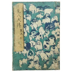 Antique Japanese History Book Meji Era, circa 1878
