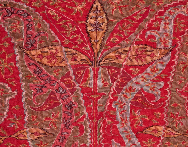 Wool Antique Kashmir Long Shawl from India Early 19th Century, 1830s For Sale
