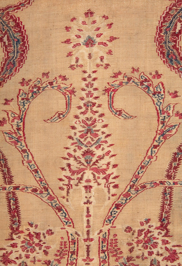 Antique Kashmir Shawl from India, 19th Century For Sale 3