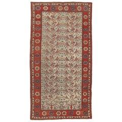 Antique Khotan Samarkand Rug, circa 1920  6'3 x 12'3