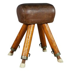 Antique Leather Pommel Horse