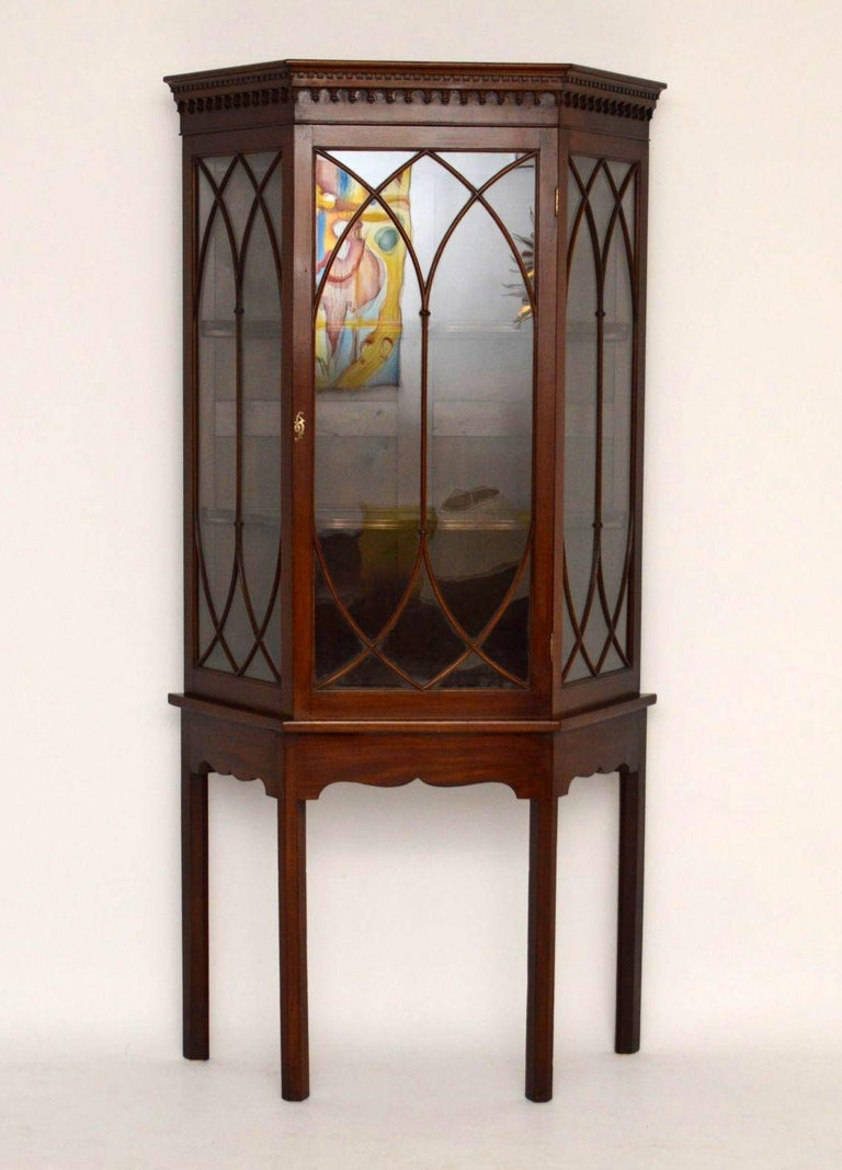 Impressive antique mahogany display cabinet in good original condition, with original color and patina. The top cornice has a dental frieze with tear drop mouldings below. The astral glazing is of Gothic design and the shelves inside the cabinet are