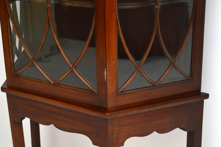 Late 19th Century Antique Mahogany Display Cabinet on Stand For Sale