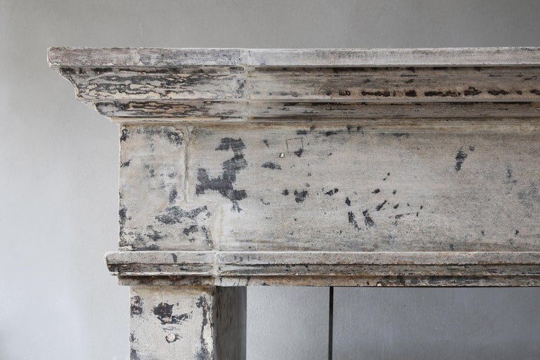 Antique Mantelpiece from the 19th Century, French Limestone, Campagnarde Style In Good Condition For Sale In Made, NL