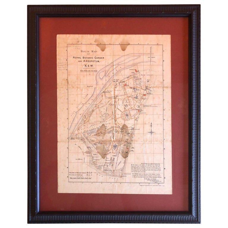 Antique Map of the Royal Botanic Garden & Arboretum Kew in London, England For Sale