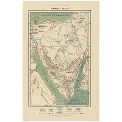 Antique Map of the Sinai Peninsula by Appleton '1895'