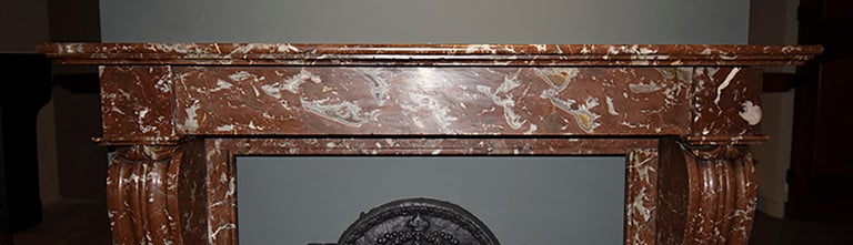French Antique Marble Fireplace, 19th Century For Sale