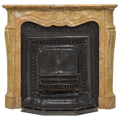 Antique Marble Fireplace with Cast Iron Stove