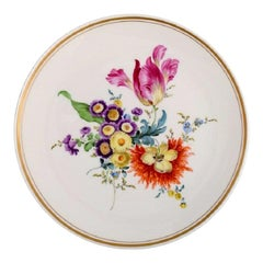 Antique Meissen Plate in Hand-Painted Porcelain with Floral Motifs, 19th/20th C.