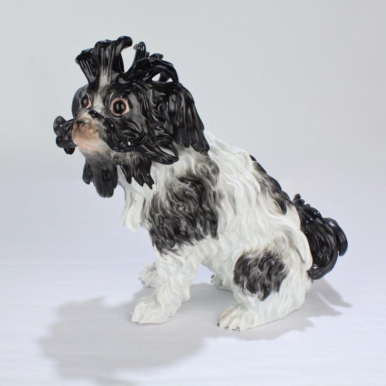 A good, antique Meissen porcelain figurine of a Bolognese dog. 