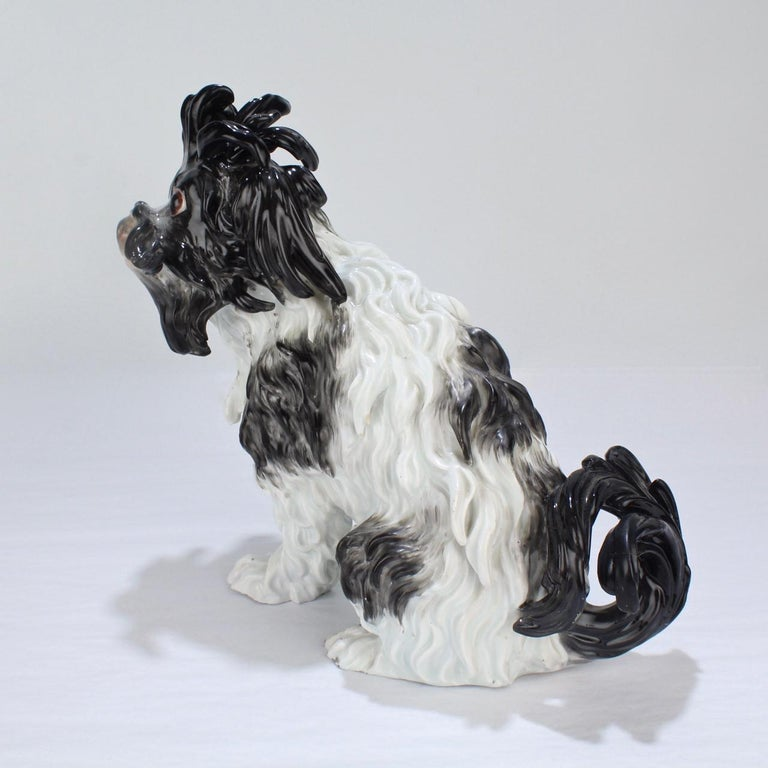 Rococo Antique Meissen Porcelain Bolognese Dog Figurine For Sale