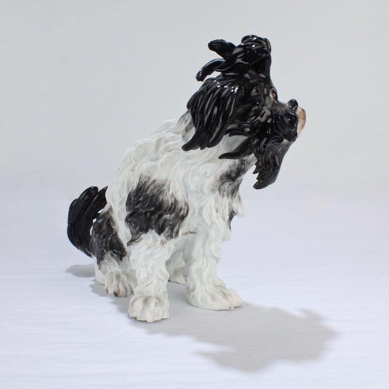 19th Century Antique Meissen Porcelain Bolognese Dog Figurine For Sale