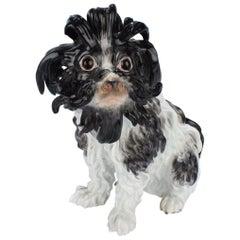 Antike Meissen Bologneser Hunde Porzellanfigur