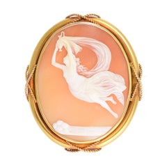 Antique Mid-Victorian Iris Shell Cameo Brooch