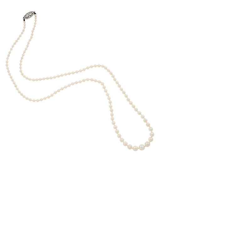 An Antique natural pearl necklace with a navette-shaped diamond and platinum clasp. The necklace is comprised of 133 natural pearls graduating from 2.5mm to 5.5mm.  There are 6 diamonds in the clasp totaling 0.42cts. 21.5 inches long. In The Phillip