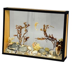 Antique Natural Wunderkammer Aquarium Specimen in Glass Showcase