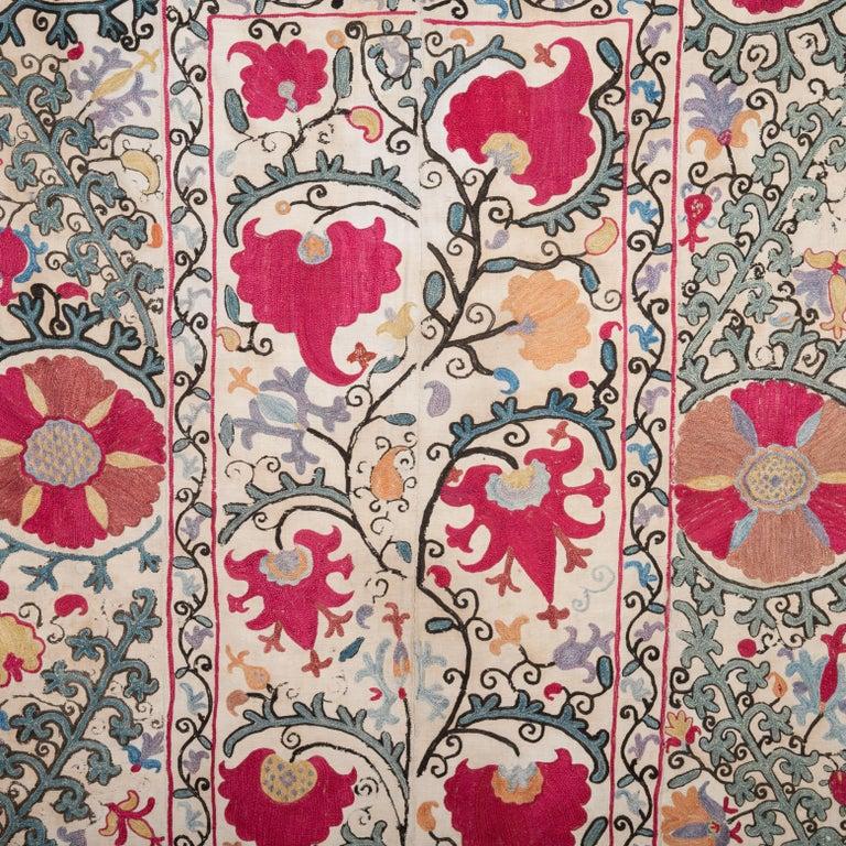 Embroidered Antique Nom Suzani from Bukhara Uzbekistan, 19th Century