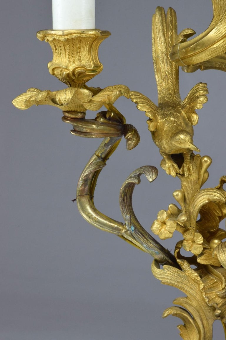 French Pair of Antique Louis VXI Ormolu Electrified Candelabras  For Sale 9