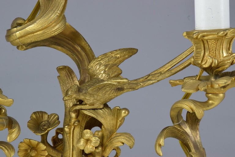 French Pair of Antique Louis VXI Ormolu Electrified Candelabras  For Sale 10