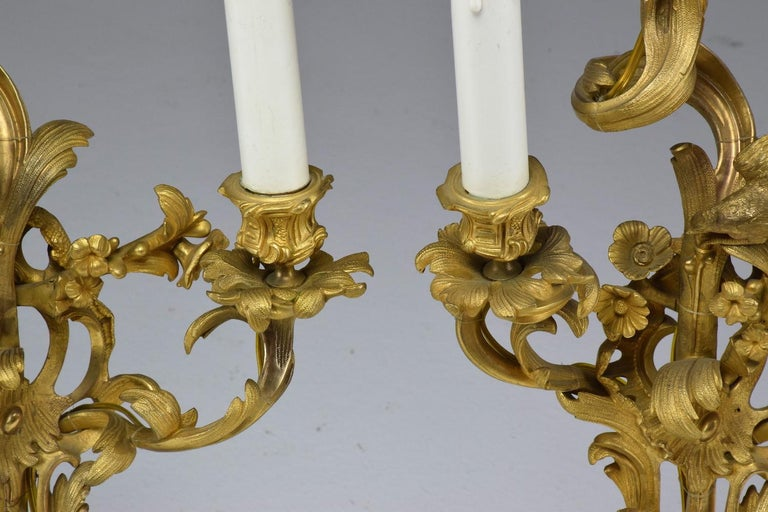 French Pair of Antique Louis VXI Ormolu Electrified Candelabras  For Sale 12