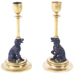 Antique Pair of French Novelty Bronze Spaniel Candlesticks, 19th Century