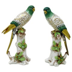 Antique Pair of Meissen Style Continental Parrots Birds Green Gilt, 19th Century