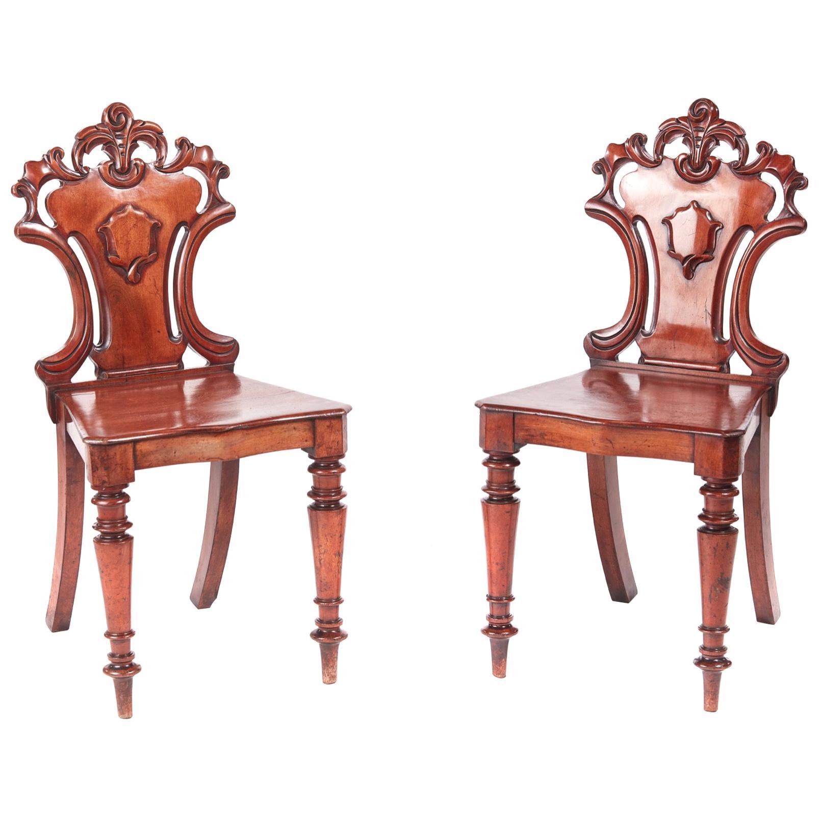 Antique Pair of William IV Mahogany Hall Chairs
