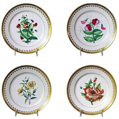 Antique Paris Porcelain Botanical Set of Plates, Flamen-Fleury, circa 1830-1835