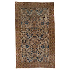 Antique Persian Afshar Rug, All-Over Field, Gold and Coral Borders, circa 1920s