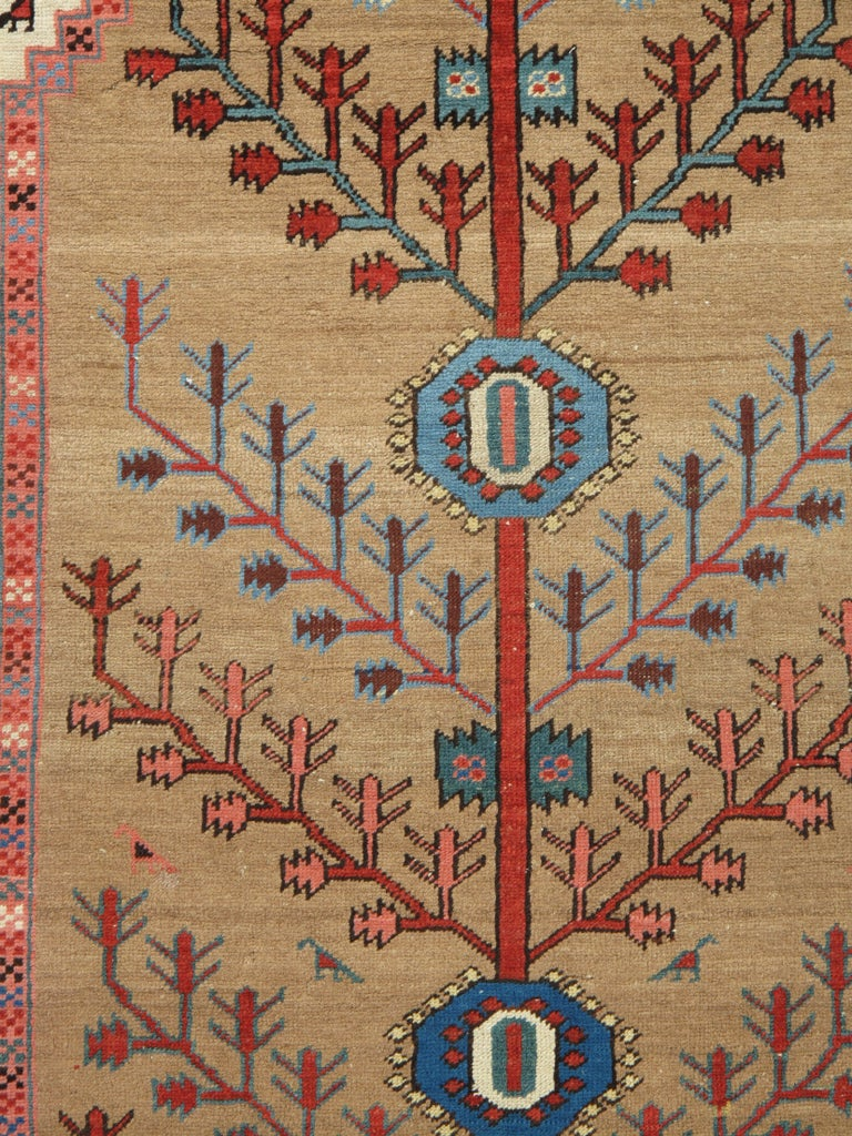 Antique Bakhshaish / Serapi carpets are one of the most sought after rugs particularly in America and England for many years. Antique Serapi rugs are a major draw particularly in big city America. Serapi carpets were woven on the level of small