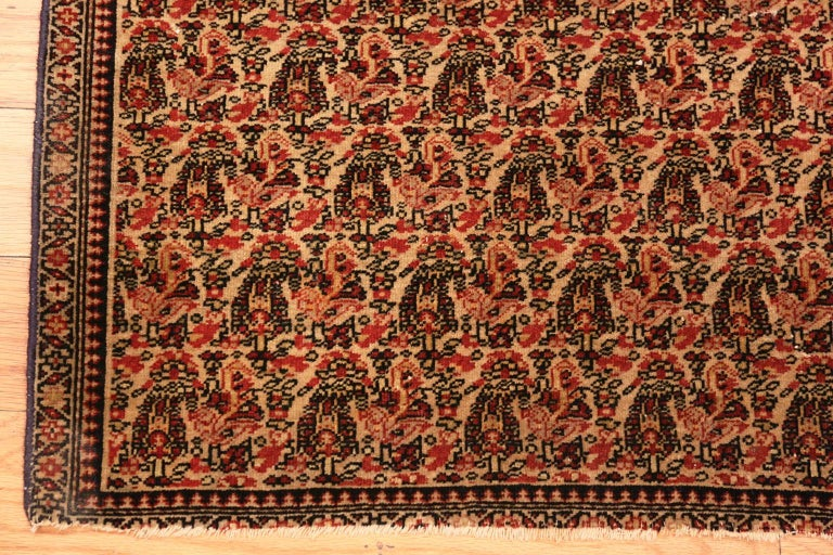 Antique Persian Senneh rug, origin: Persia, date circa 1880.