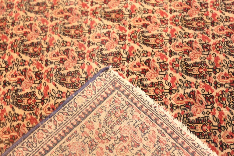 19th Century Antique Persian Senneh Rug For Sale