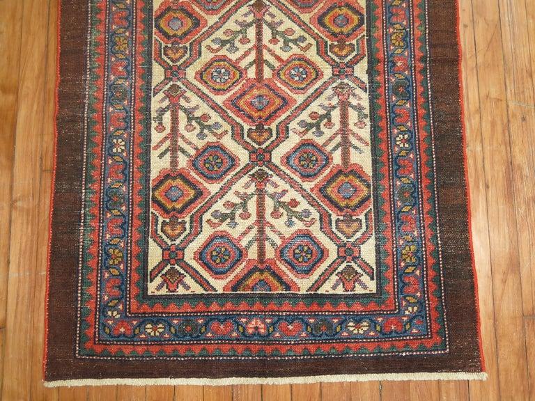 An early 20th century Persian Serab mat.