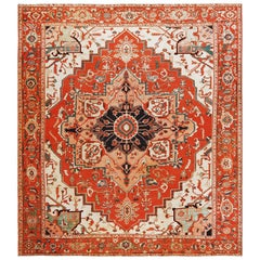 Antique Persian Serapi Rug. 10 ft 3 in x 11 ft 8 in