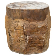 Antique Petrified Wood Tree Stump Drinks Table or Stool Covered in Gesso