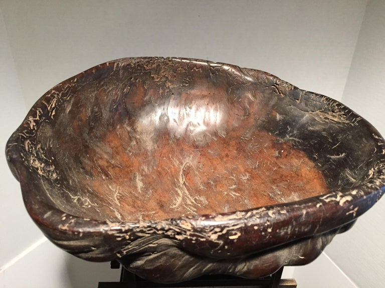 Old Bontok or Ifugao burl bowl of narra wood -- a dark hardwood native to the Philippines -- with a rich, well-used patina. The bowl was collected in the mountain province of Norther Luzon and was in the collection of a retired ship's captain who