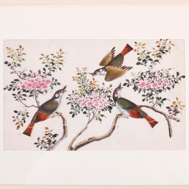 Charming framed and matted antique Chinese painting of birds. Painted on pith paper with gouache in bold colors in a scholastic style. Having the expected wear and foxing.