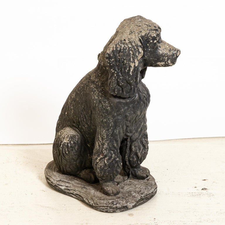 Unique cast stone garden statue in the shape of a seated poodle dog. Made in England in the early 20th century, this charming statue a playful element to add to the landscape. Nice texture at the curly coat of the dog. Good condition, weathered with