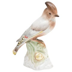 Antique Porcelain Bird Sculpture or Figurine, Hand Painted and Realistic, KPM