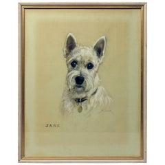 "Antique Portrait Watercolor Painting of Terrier Dog ""Jane, Signed M. Gear, 1925"