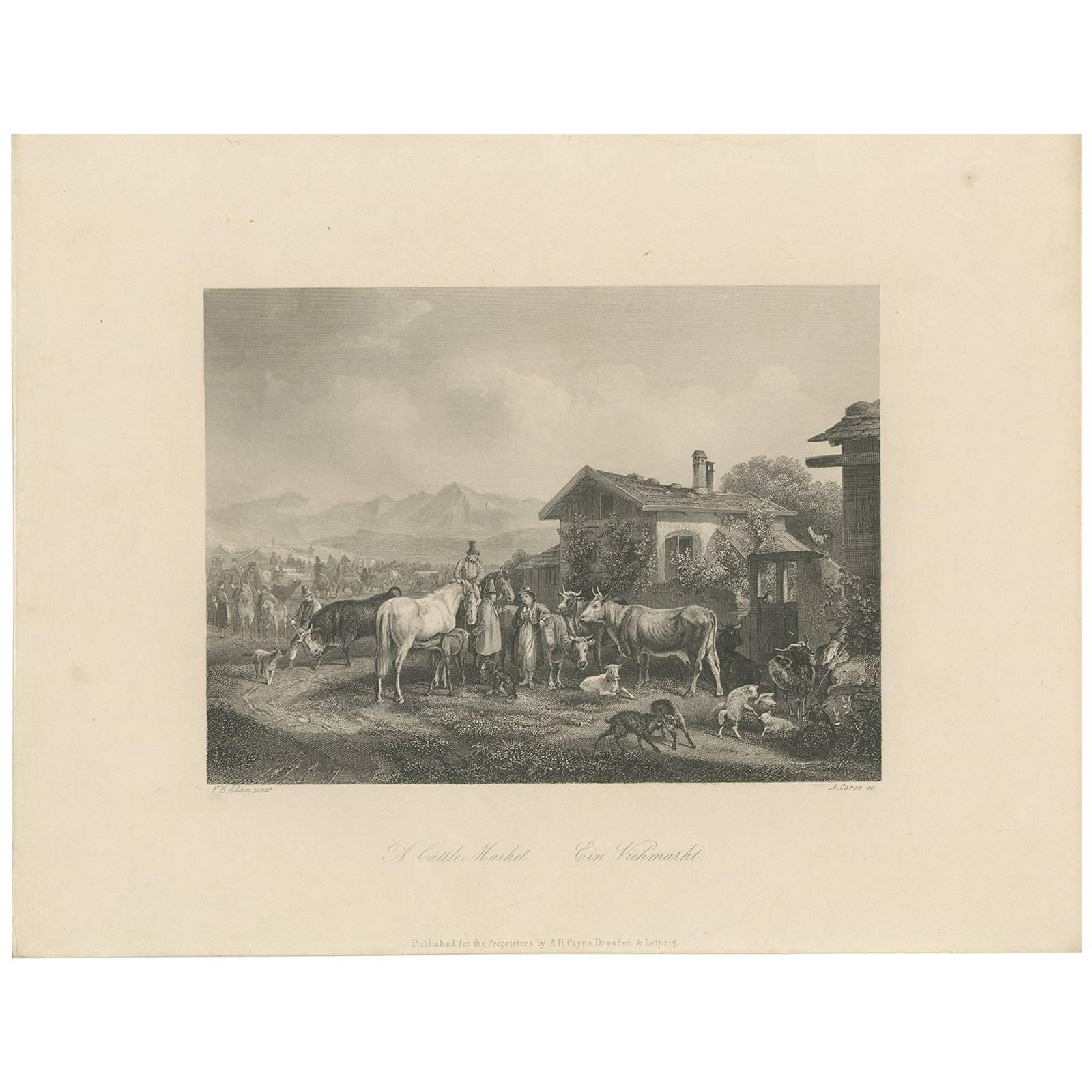 Antique Print of a Cattle Market by A. Carse, circa 1850