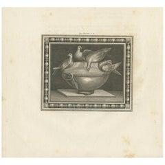 Antique Print of Birds and a Birdbath 'circa 1820'