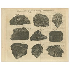 Antique Print of Coal and Bitumen '1769'