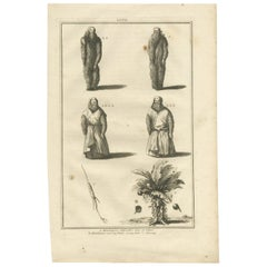 Antique Print of Mandrake Roots and a Root of Ginseng, 'c.1790'