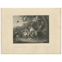 Antique Print of Poultry Attacked by a Hawk by Payne 'c.1860'