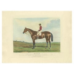 Antique Print of the Winning Horse 'Nutwith' and a Jockey 'c.1840'