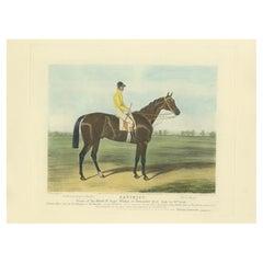Antique Print of the Winning Horse 'Satirist' and a Jockey '1841'