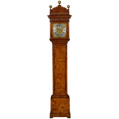 Antique Queen Anne Burr Walnut Longcase Clock by Christopher Gould of London