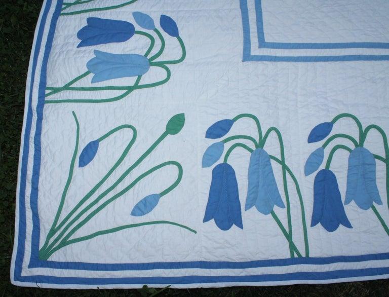 20th Century Antique Quilt, Applique Quilt, ll For Sale